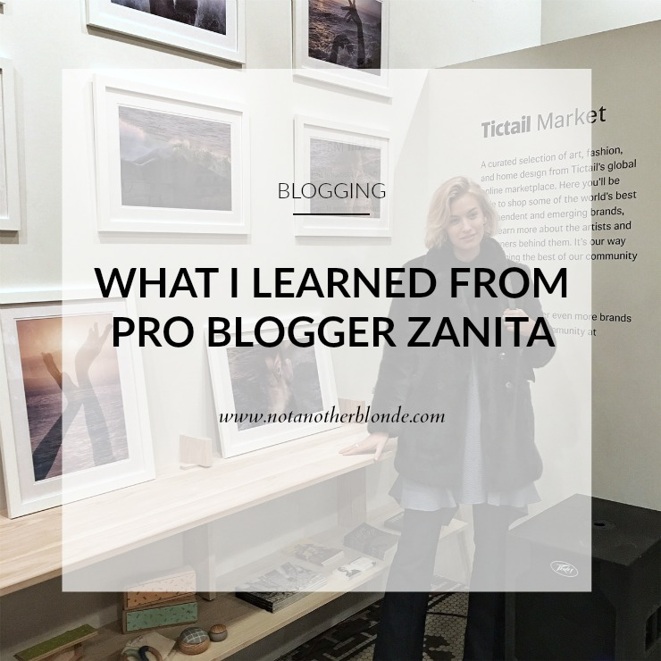 what i learned from blogger zanita